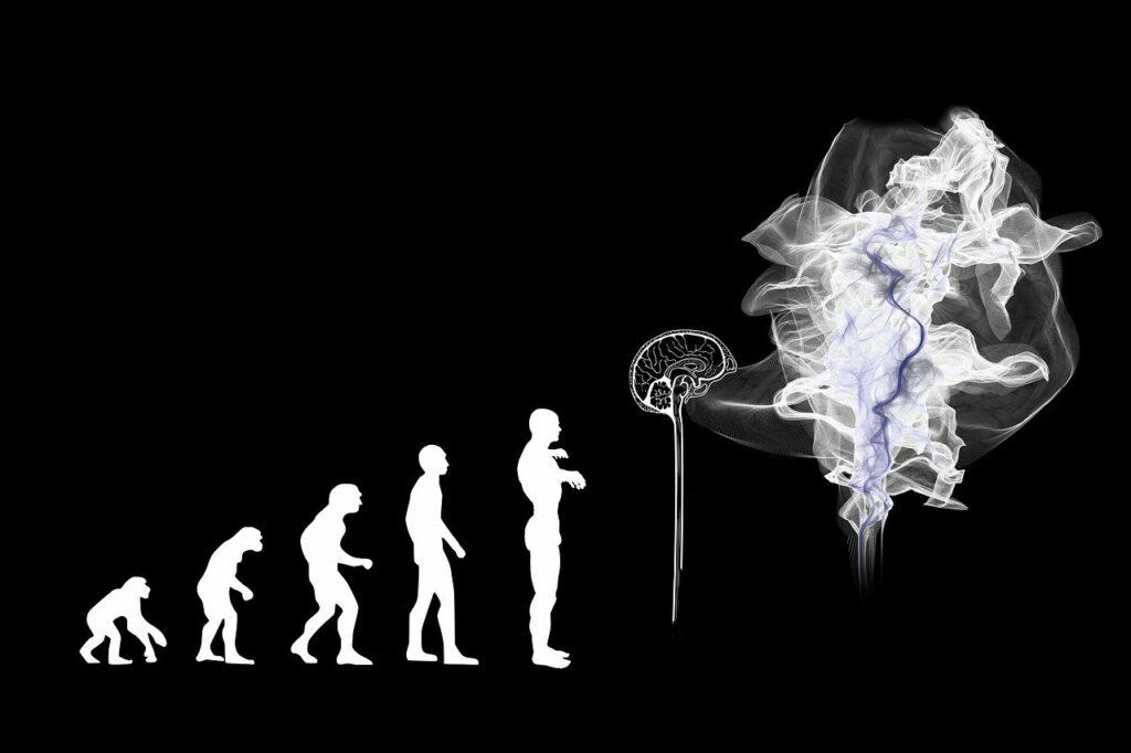 Ο Δαρβίνος και η θεωρία της εξέλιξης